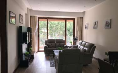 furnished 2 bedroom apartment for rent in Spring Valley