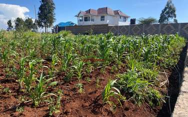 0.05 ha residential land for sale in Kikuyu Town
