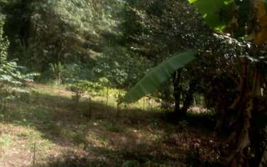 4047 m² residential land for sale in Karen