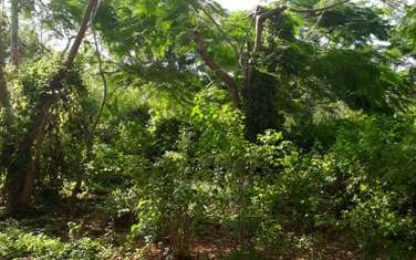 2024 m² land for sale in Kikambala
