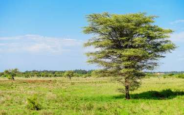 1 ac land for sale in Embu East