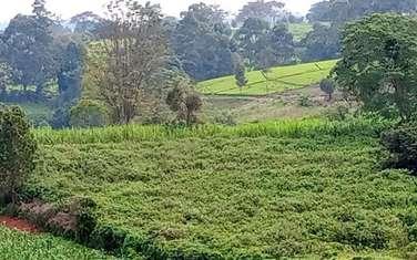 Land for sale in Tigoni