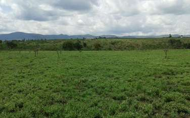 24282 m² commercial land for sale in Nanyuki