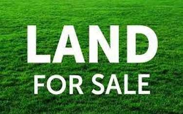 25 ac commercial land for sale in Karen