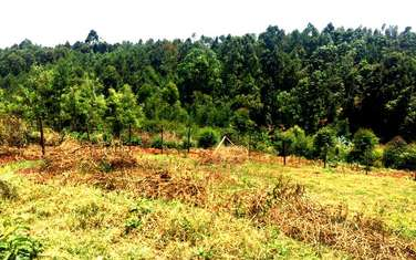 2023 m² commercial land for sale in Ruaka