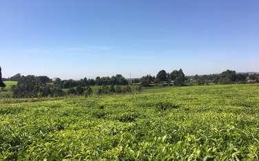 1 ac residential land for sale in Tigoni