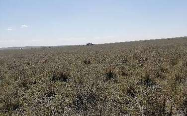 Land for sale in Makueni