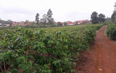 40470 m² land for sale in Runda