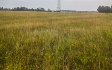 Land for sale in Kieni