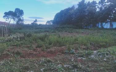 0.25 ac land for sale in Limuru Area