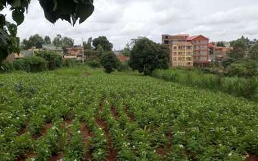 3035 m² land for sale in Ruaka