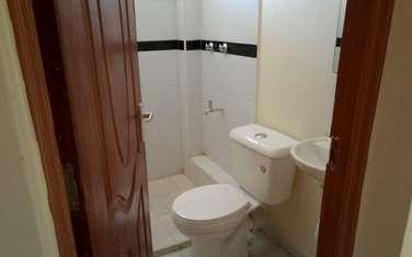 1 bedroom apartment for rent in Kitisuru