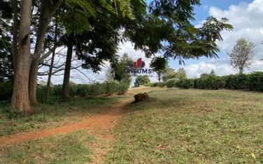 0.25 ac commercial land for sale in Ruiru