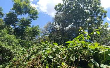 Residential land for sale in Rosslyn