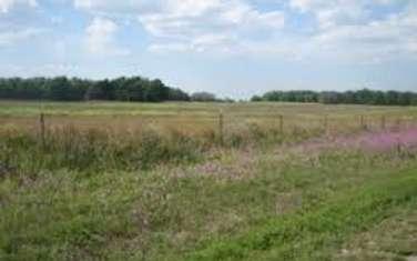 1 ha land for sale in Kitengela