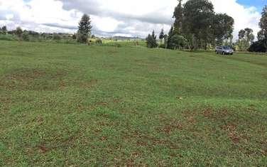 84987 m² land for sale in Cianda