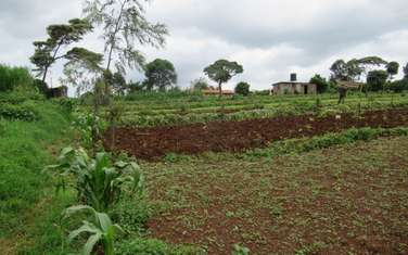 14165 m² commercial land for sale in Wangige