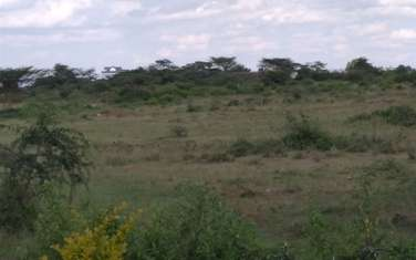 1011 m² residential land for sale in Ongata Rongai