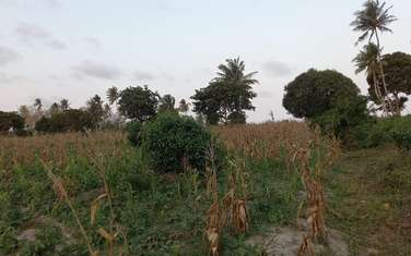 12 ac commercial land for sale in Kikambala