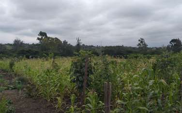 4046 m² commercial land for sale in Ongata Rongai