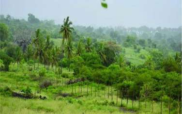 450 m² commercial land for sale in the rest of Kwale