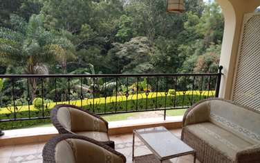furnished 3 bedroom apartment for rent in Spring Valley