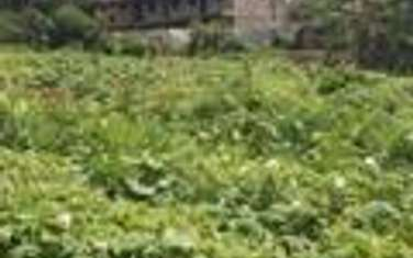 1011 m² commercial land for sale in Ngong