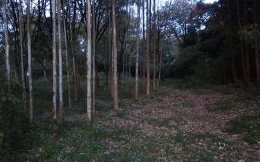 43706 m² land for sale in Kitisuru