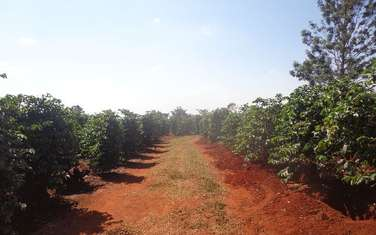 1222194 m² commercial land for sale in Kamiti