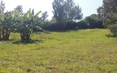 Land for sale in Thome