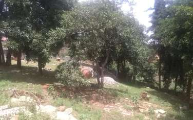 5059 m² commercial land for sale in Ruaka