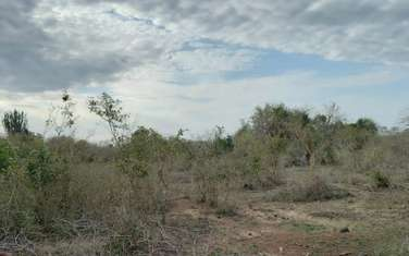100 ac commercial land for sale in the rest of Kwale