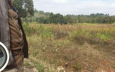 Land for sale in Ndeiya