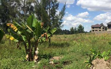 24 m² residential land for sale in Kandara
