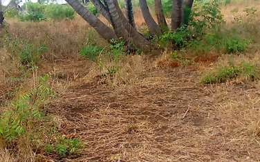 Land for sale in Kilifi South