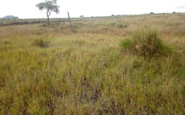 464.51 m² land for sale in Isinya