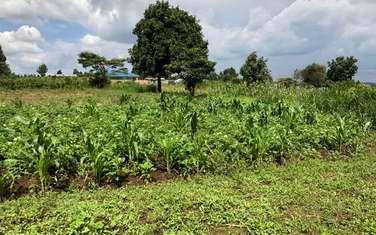 500 m² land for sale in Kikuyu Town