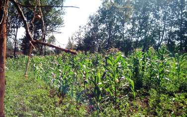 3035 m² land for sale in Thindigua