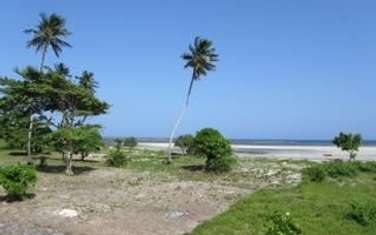 18212 m² commercial land for sale in Diani