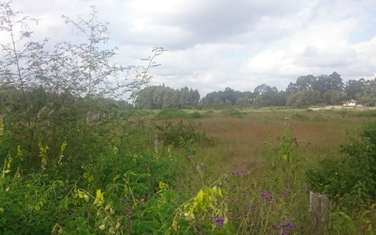1432638 m² land for sale in Day Star