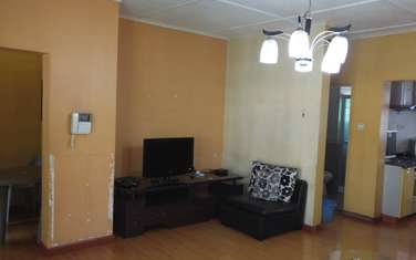 Furnished 2 bedroom apartment for rent in Milimani