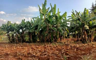 0.247 ac land for sale in Ruaka