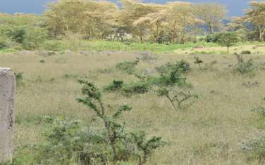 500 m² commercial land for sale in the rest of Rongai