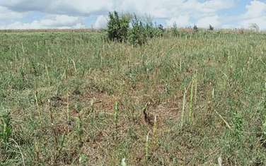 10 ac land for sale in Ongata Rongai