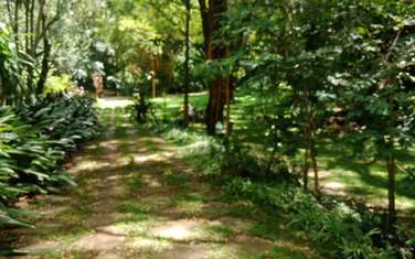 Land for sale in Old Muthaiga