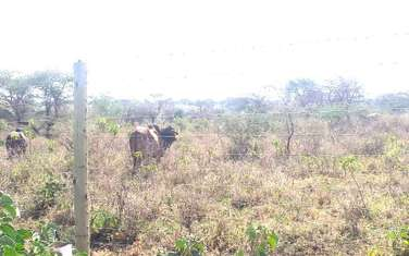 2023500 m² commercial land for sale in Kajiado Town