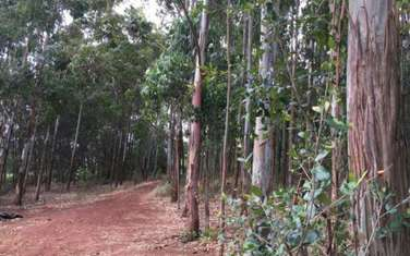 10 ac residential land for sale in Karen