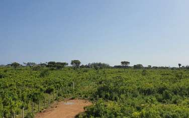 464 m² land for sale in Diani