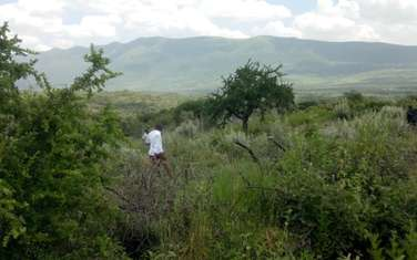 505 m² land for sale in Ngong