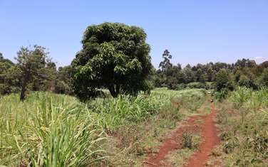 505 m² land for sale in Ruaka